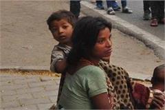 horse dogs bull and beggars raid in shahi city   gadar