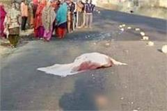 painful incident  the bus dragged to retired teacher 50 meter  death on spot