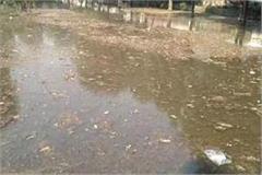 haryana  rohtak  minor broken  park submerged