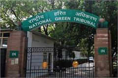 cabinet decides to challenge ngt orders