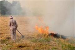 3 438 farmers who did not burn stubble got 1 crore 45 lakh