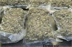 ganja and mobile recovered
