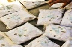 kaithal  patwari  opium  police  drug
