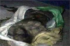 4 more corpses found from the narwana canal