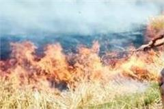 here electricity wires havoc on 4 farmers  fire in wheat crop