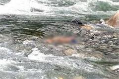 painful incident  2 children flow in beas river  one  s deadbody recovered