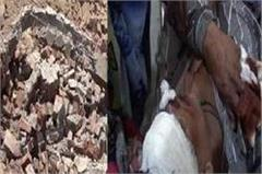 1 worker dies due to falling wall from faridabad