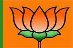 mc election  these bjp leaders including satti have taken the lead in shimla