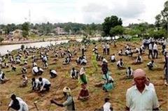 six million plants planted in madhya pradesh