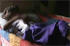 neighbors make up  6 year old innocent victim made havus