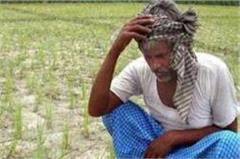 drought in bundelkhand  on the brink of kharif crop being split