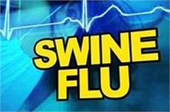 swine flu virus active in winter instead of winter