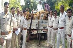 ig deed of forest department holding illegal teak two
