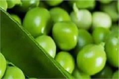 peas happened across 50