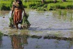 9 lakh farmer families suffer from government negligence