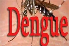 dengue in punjab