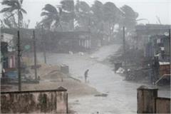 odisha many children born during the storm were named titli