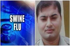 swine flu panic asp lost