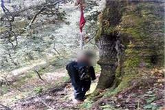 deadbody of tracker found in forest hanged on tree