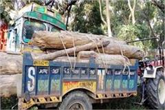 forest department seizes 2 tractors filled with timber one arrested