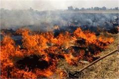 parali burning issue