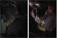 accident kuldeep sharma
