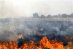 delhi polluted air
