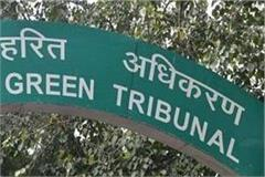 ngt orders will not apply to people of shimla