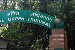 government complicating the petition filed against ngt