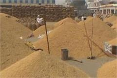 issuance of notice to 6 shopkeepers who purchase paddy in low prices