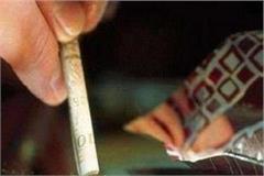 kangra police will expose drug smugglers