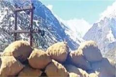 2 crore lahauli ppotatoes buried in snow