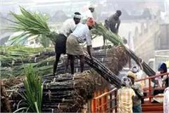 sugarcane farmer will do road block on november 17
