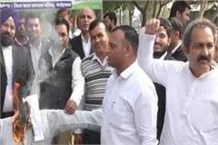 lawyers blame state minister krishna bedi s effigy