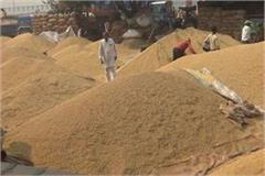 gohana mandi becomes millionaire by raising paddy farming prices