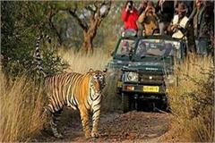 dudhwa tiger reserve will open for tourists from november 15