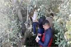 society inspector found in this condition in forest
