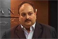 mehul chokasi accused of pnb scam refuses to come to india