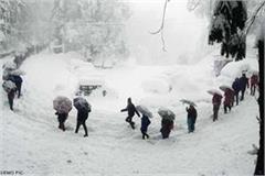 60 people stranded in lahaul between heavy snowfall