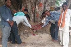 farmers climb on the onion to temple