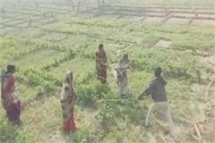 jaunpur video viral of beating women