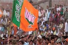 bjp won in five mc of haryana