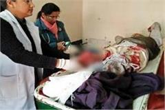 painful incident gave the elderly the wounds of life  read news