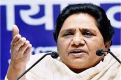 bjp is forced to sell tea and pakodas instead of providing job mayawati