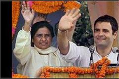 maya is also a up in favor of converging the coalition together with congress