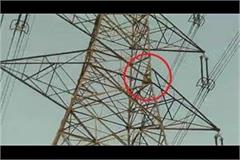 farmers climbing on electric towers threatens suicide