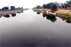 sewerage water coming in sirhind and rajasthan feeder canals