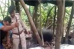 police of drug dealers against big action