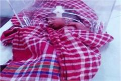 newborn wrapped in polythene mixed with bushes treatment in hospital