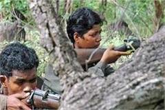maharashtra police kill 13 naxalites